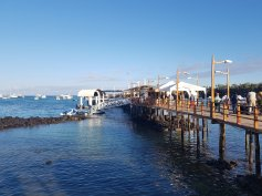 Puerto Ayora, Galapagy